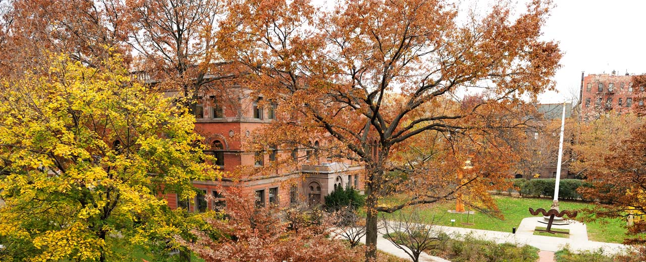 Pratt Institute campus in the fall