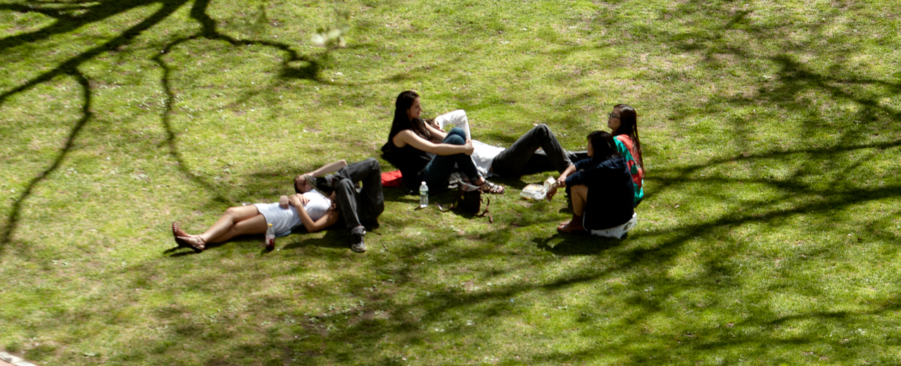 Students sitting on the grass on Pratt Institute campus