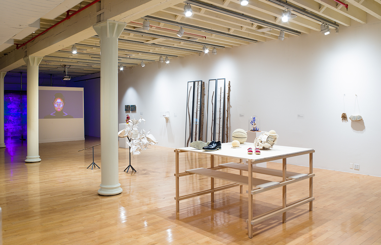 Installation view, See Yourself E(x)ist, photo by Jason Mandella Photography