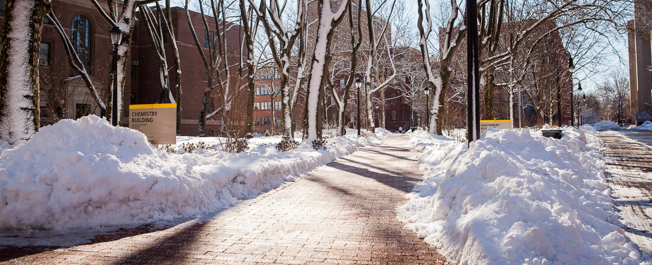 Pratt Institute campus in the snow