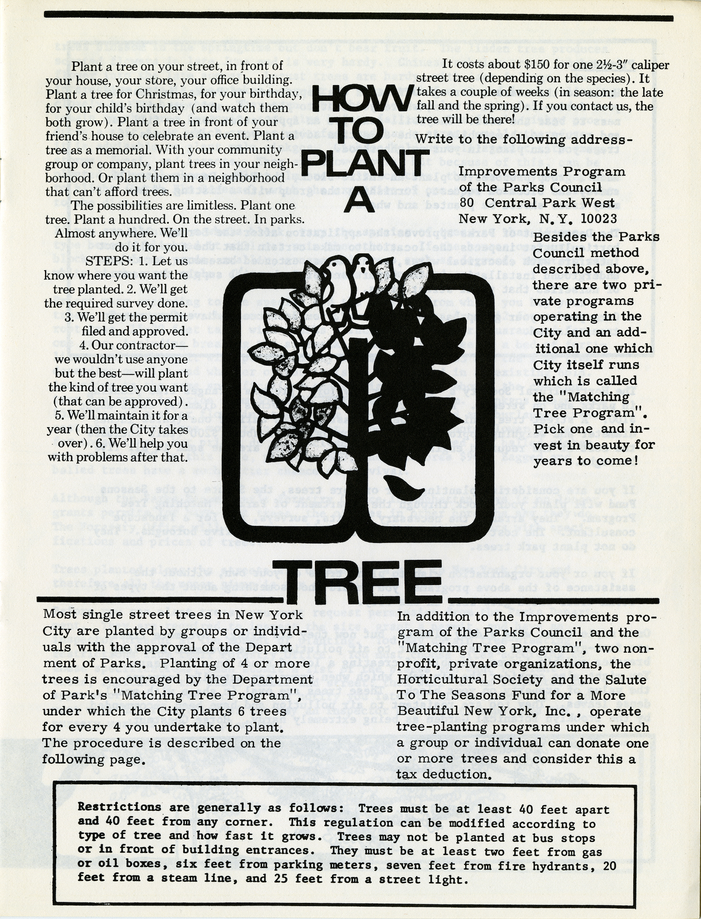 How to Plant A Tree (1970s) (Ronald Shiffman collection on the Pratt Center for Community Development, 2013.023, Box 70, Folder 23; Brooklyn Historical Society)