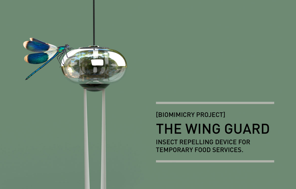 A dragonfly landed on the Wing Guard Device, accompanied with the project title