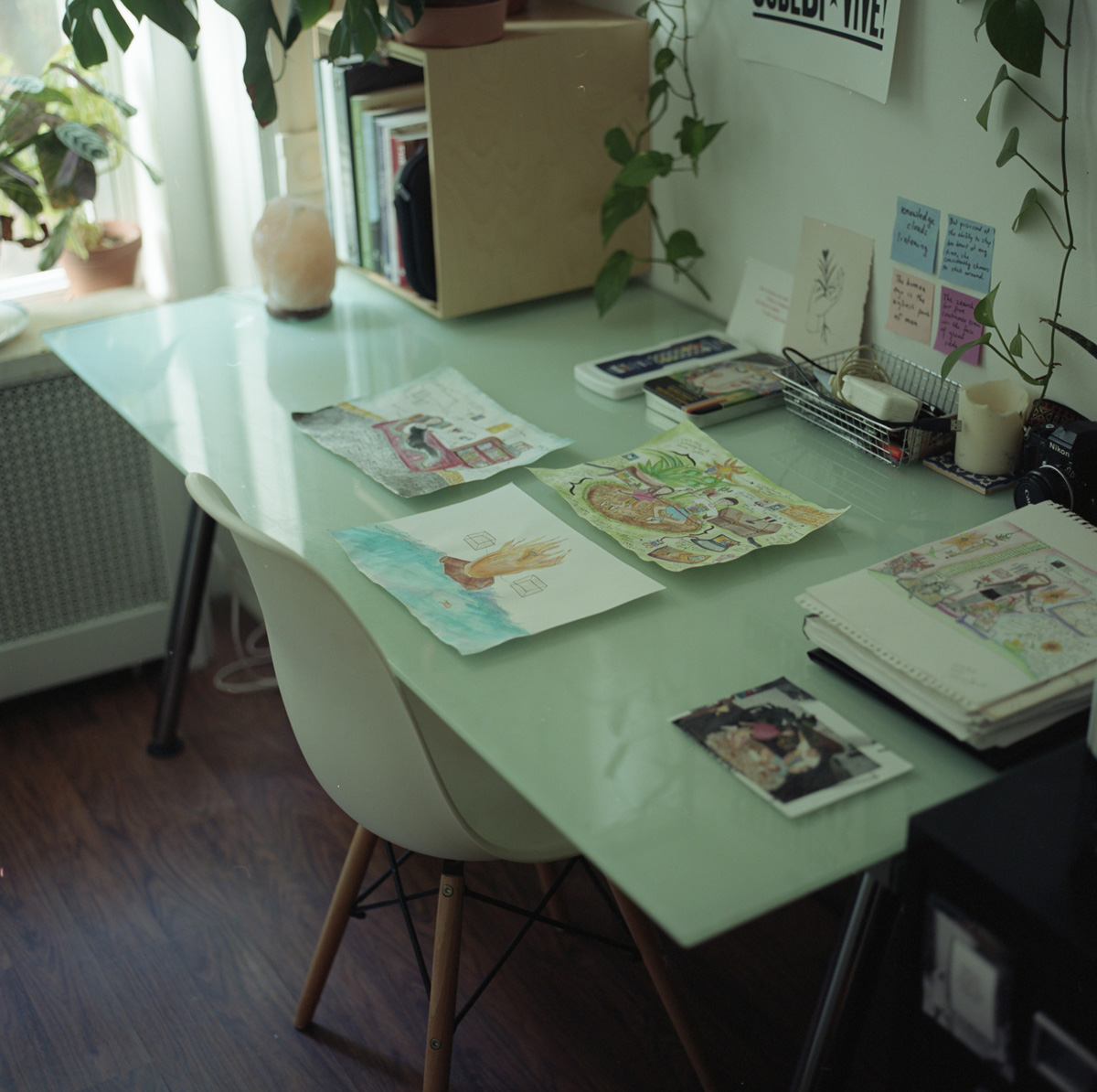Glass desk top with three watercolors on paper and neatly organized art supplies, greenery cascading from above