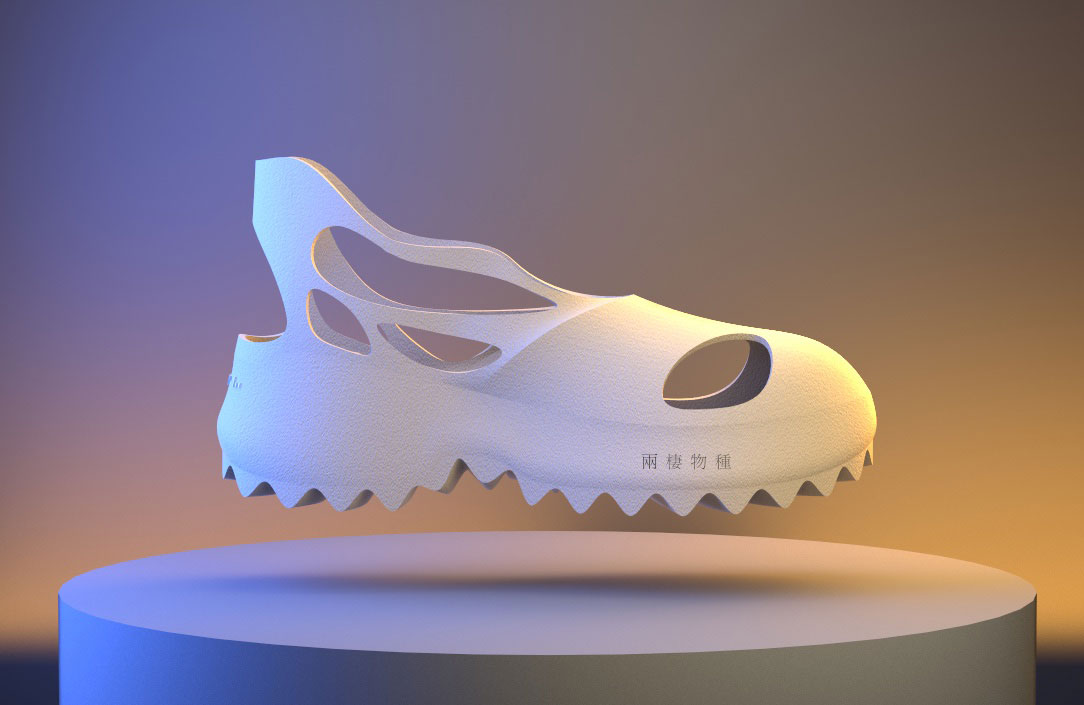 lateral view of shoe design
