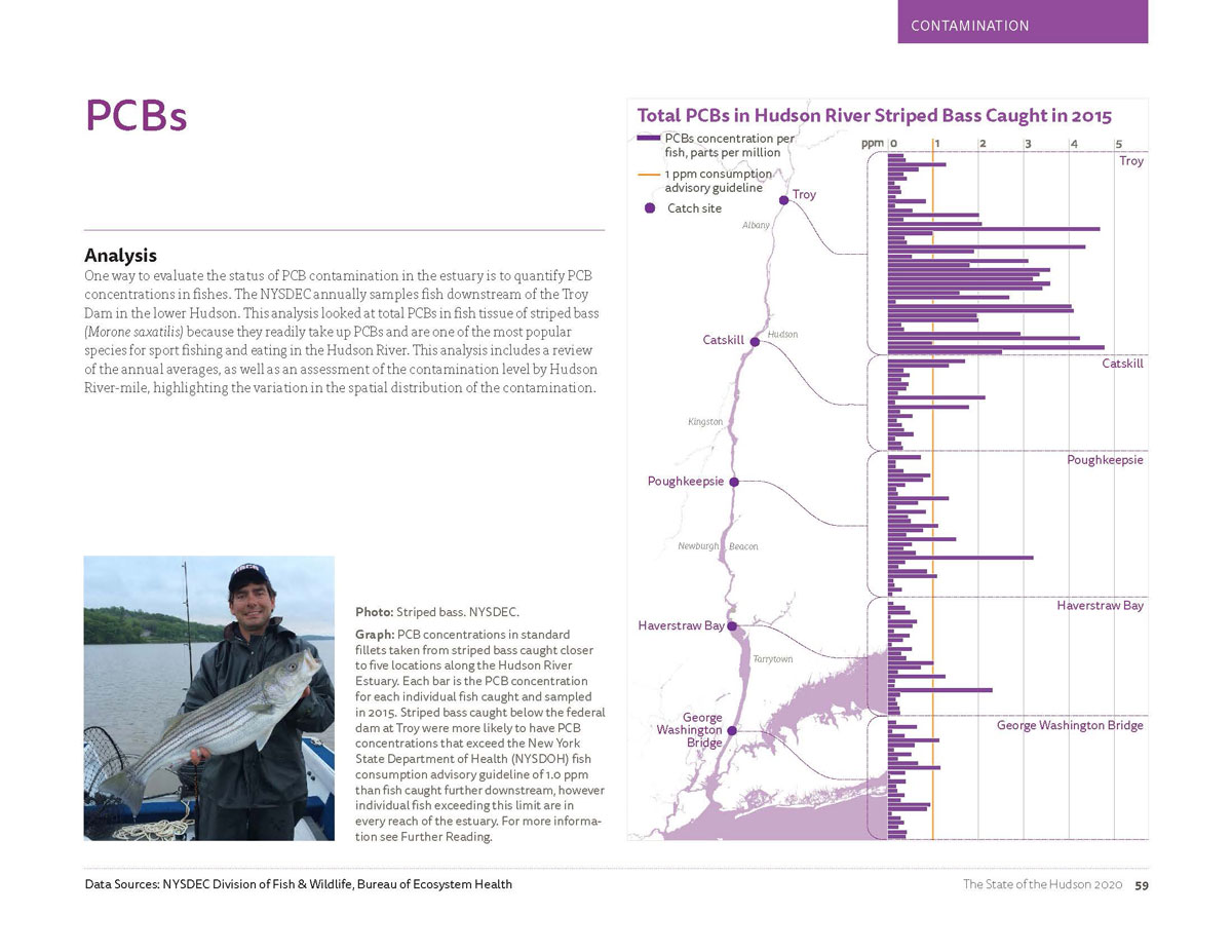 Image is a snapshot of the PCB (or polychlorinated biphenyls) concentrations in Hudson River Striped Bass caught in 2015. For detailed information, view the PDF on page 59.