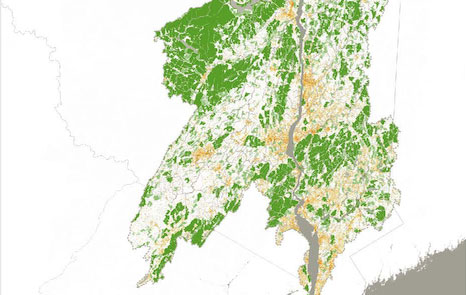 Close-up of data map showing core forest and developed land cover in the Hudson Watershed