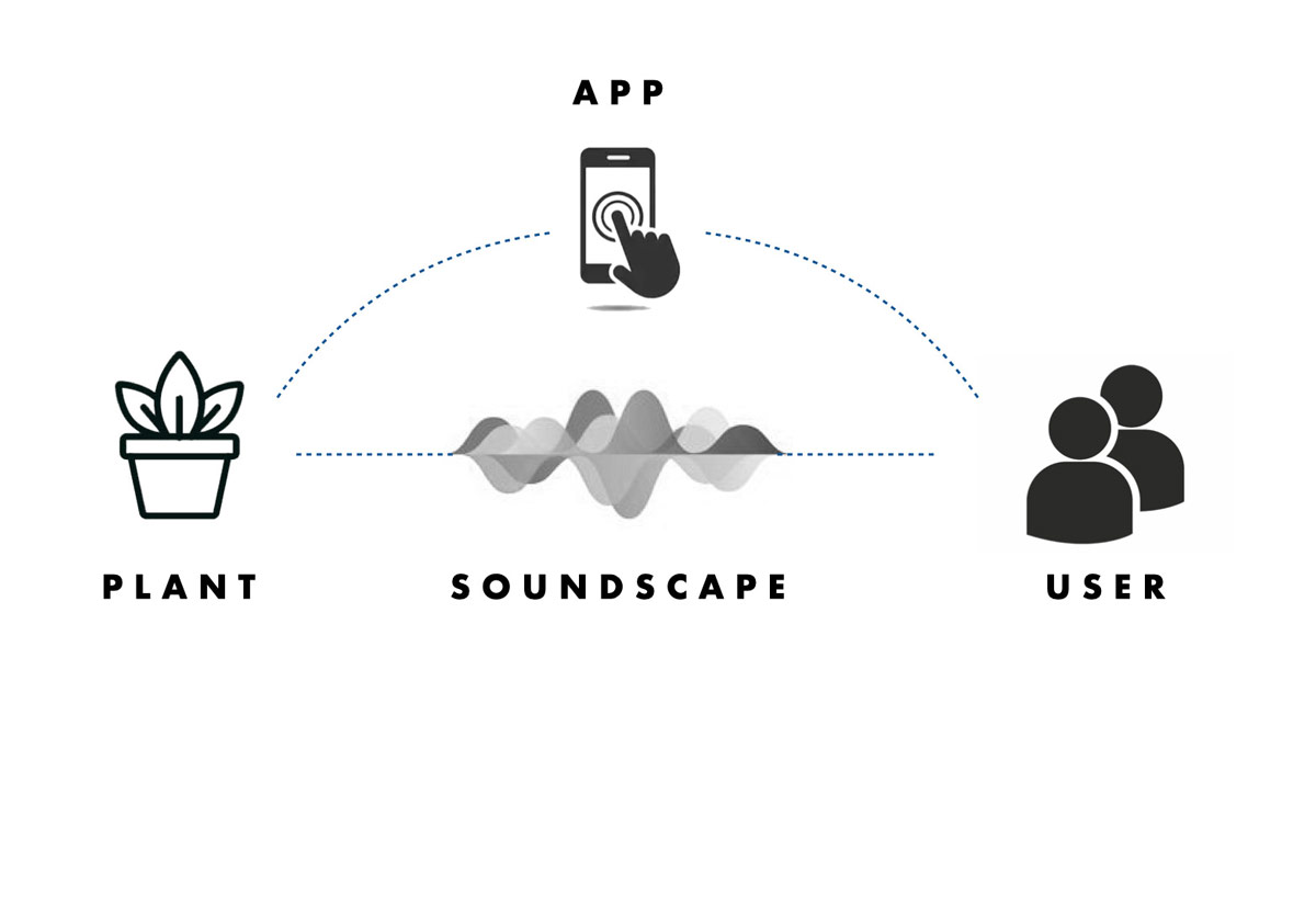 Infographic of the cyclical relationship between plant, app, soundscape, and user