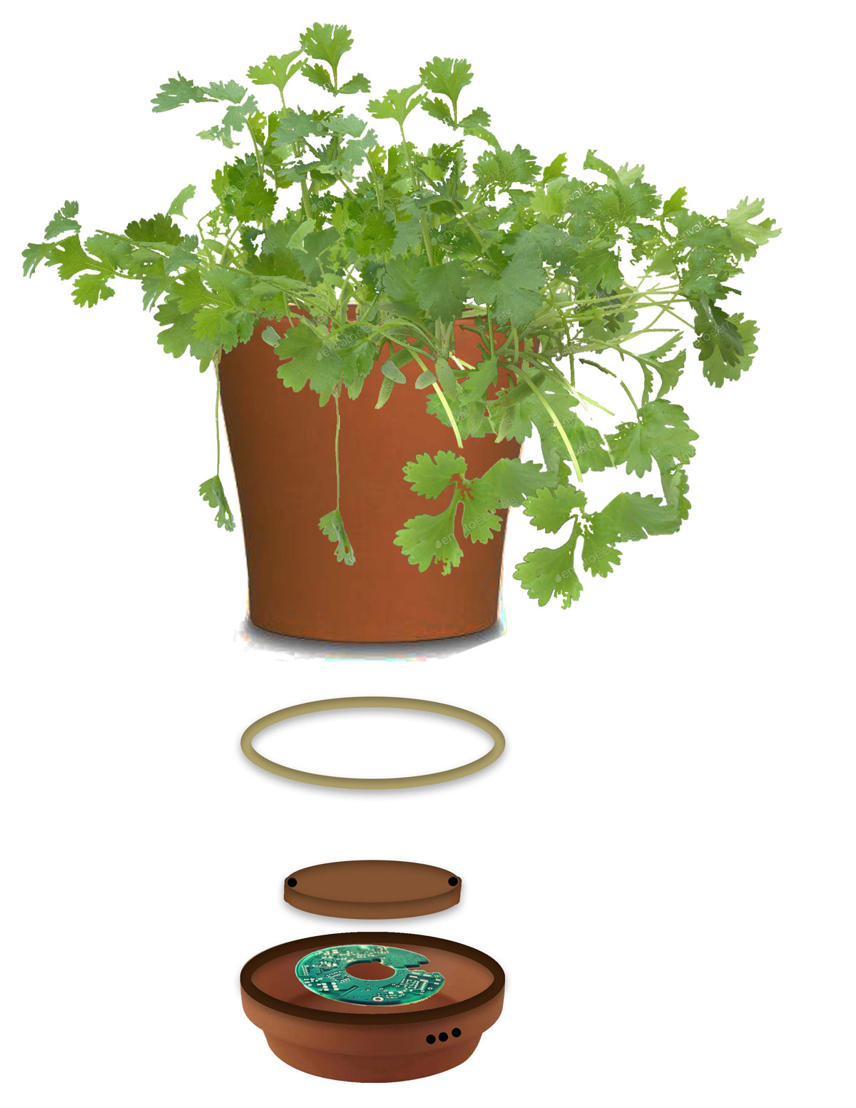Layers of the prototype: the coriander plant pot, LED, pot dish parts, built-in circuit and speakers