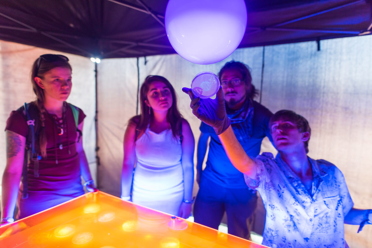Group of people watch as glow from fluorescent bacteria is shown.